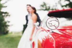 עיצוב חתונות תמונות