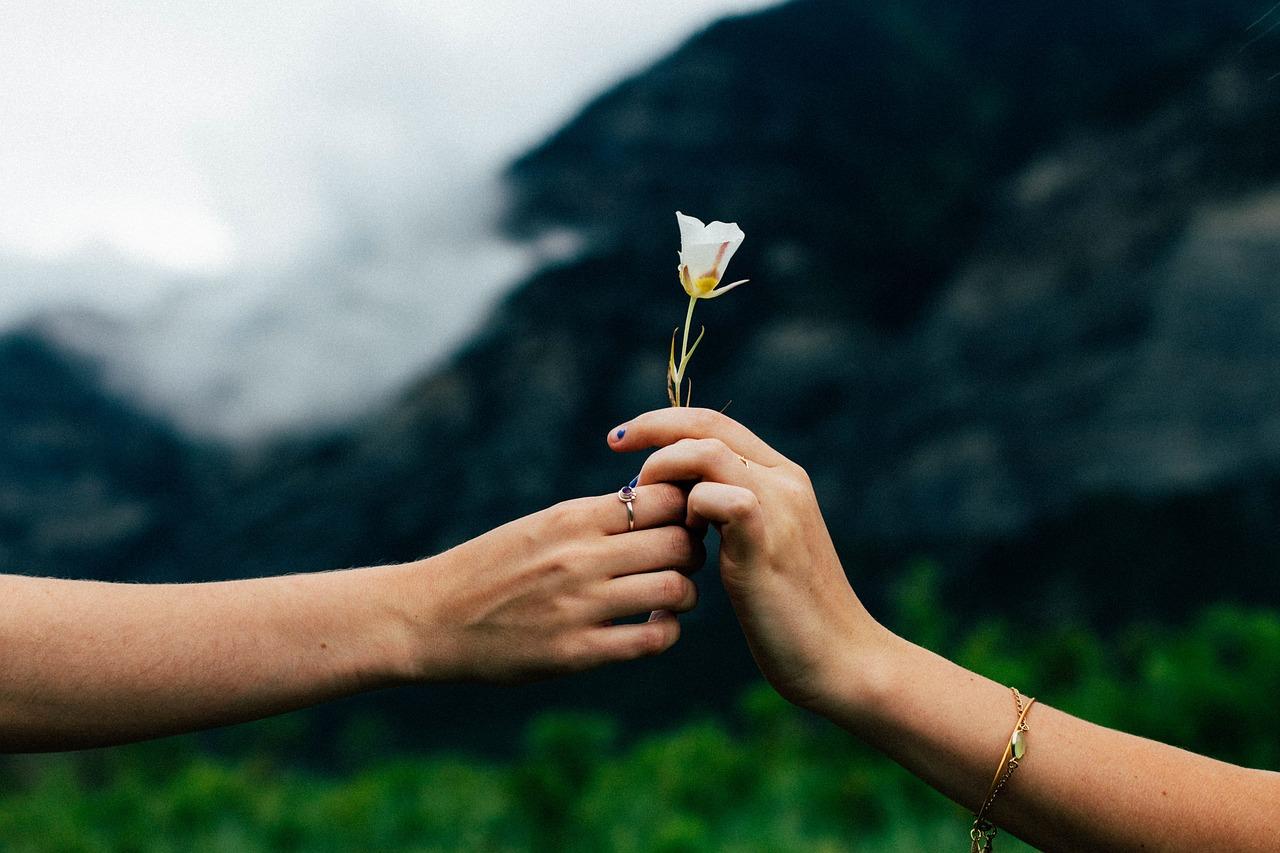 ארגון חתונה בטבע בצפון הארץ